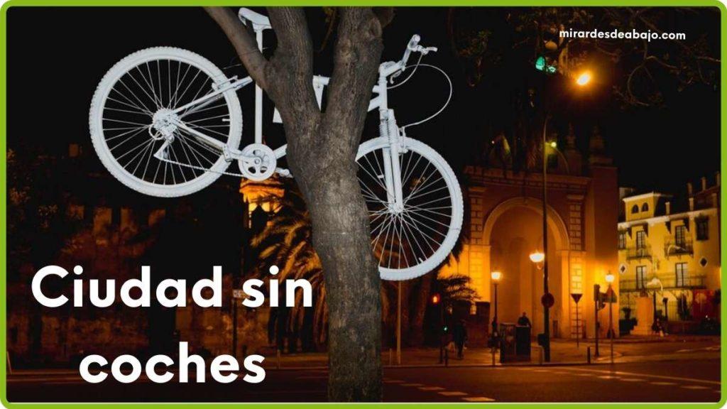 Imagen bici en árbol en Sevilla