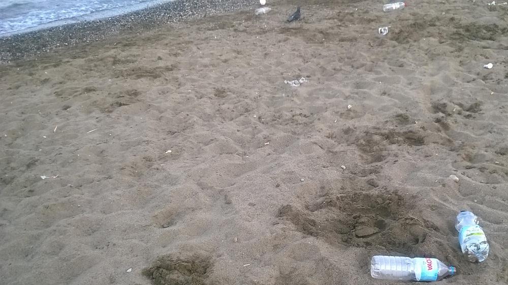 playa_misericordia_malaga_4