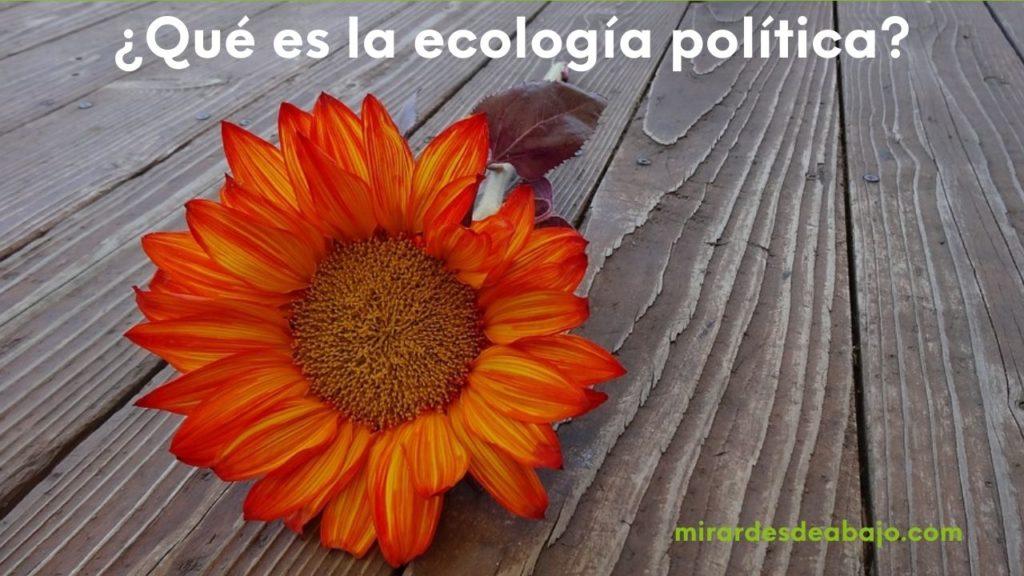 Imagen ¿qué es la ecología política?