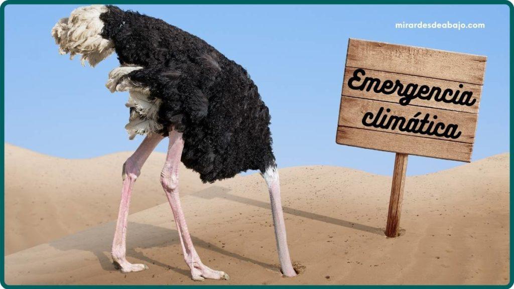 Imagen avestruz ocultando la cabeza ante la emergencia climática